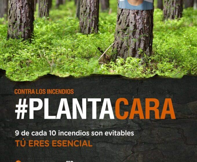Castilla-La Mancha destina más de 5,7 millones de euros al operativo de extinción de incendios forestales en Ciudad Real