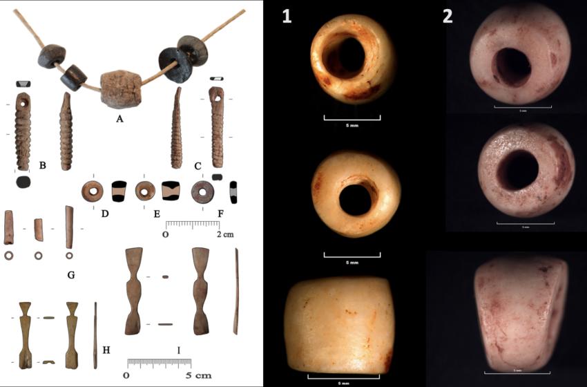 Volcanes y aldeas neolíticas: el Museo de Alicante publica un estudio sobre los primeros asentamientos estables del sur de CLM