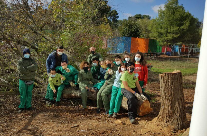 """El proyecto """"Invernadero 2.0.""""del IES Gregorio Prieto seleccionado en la IV edición de la convocatoria «Ayudas Dualiza» de Bankia"""