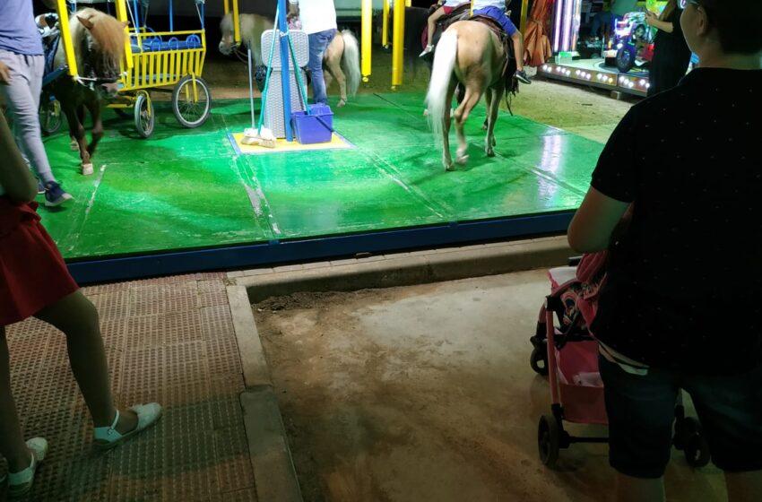 Izquierda Unida Valdepeñas aplaude que la nueva Ley de Protección Animal corrobore sus reivindicaciones en materia animalista