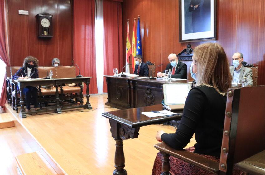Sesión ordinaria del Pleno de Manzanares