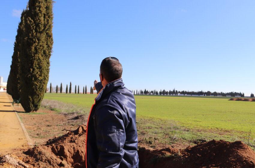 Manzanares pone en marcha el proyecto de replantación de cipreses para regenerar las zonas verdes del Polígono