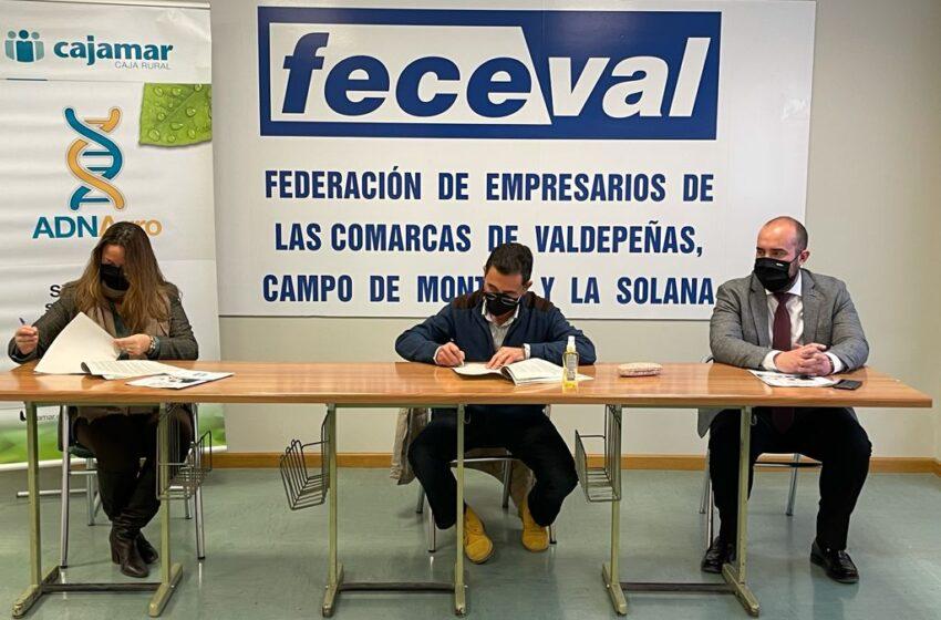 Cajamar apoya a la Asociación de Empresarios de la comarca de Valdepeñas y Campo de Montiel, Feceval