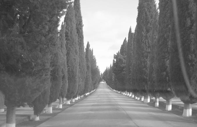 Lo que esconde Valdepeñas… los enterramientos en Valdepeñas