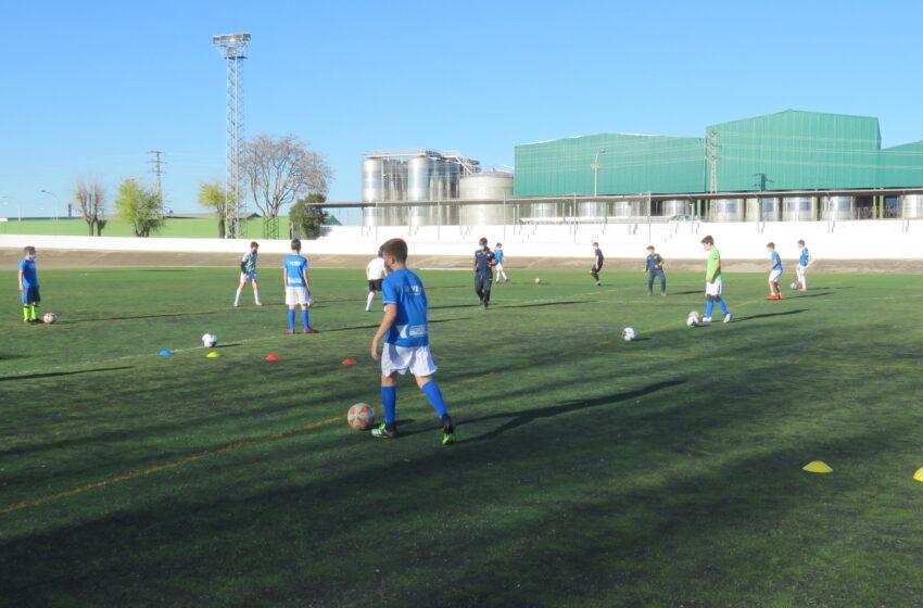 Alrededor de 650 personas retoman la actividad en las escuelas deportivas municipales de Manzanares