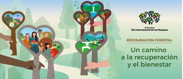 Se conmemora en la provincia el Día Forestal Mundial con alumnos de Primaria de Carrión de Calatrava
