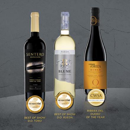 Tres vinos de Félix Solís Avantis reconocidos como los mejores de las DO Rueda, Ribera del Duero y Toro