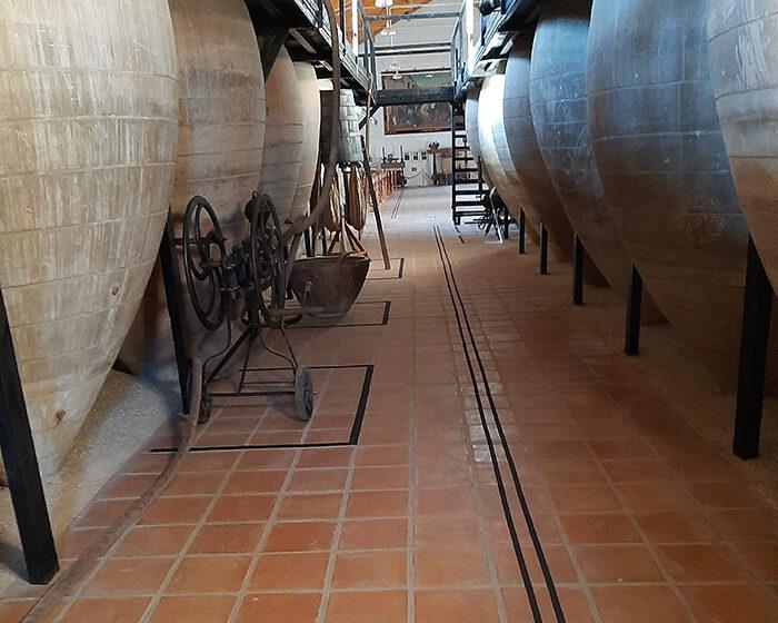Adaptaciones en el Museo del Vino para discapacitados visuales
