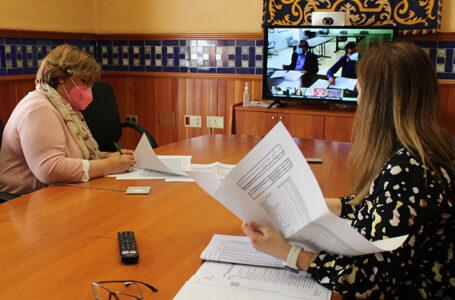 La delegada de la Junta de Comunidades, Carmen Olmedo, presidio la Comisión de Seguimiento