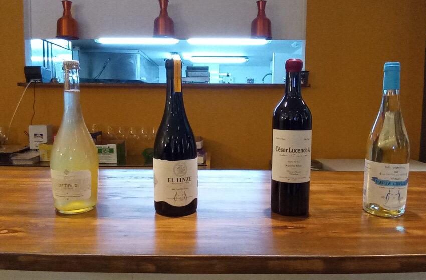Selección Lucendo ha presentado sus vinos en el Gastro-Bar La Esencia de Valdepeñas