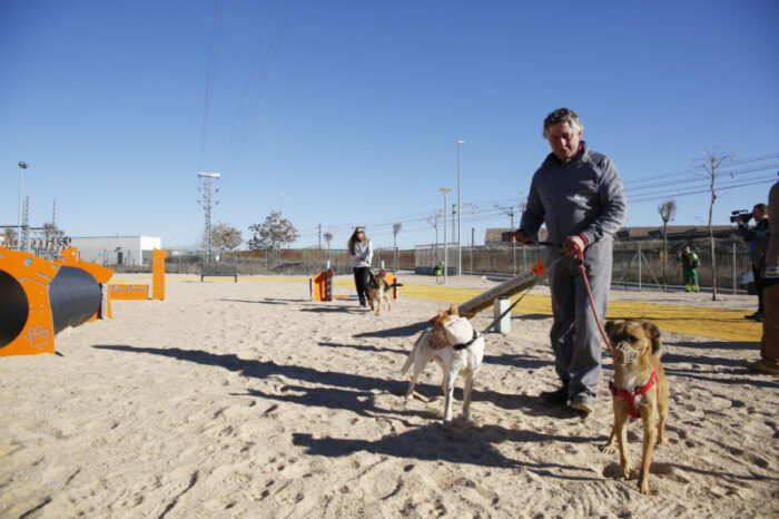 Centro municipal canino