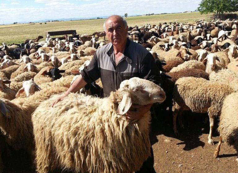 ASAJA Ciudad Real solicita agilidad en la convocatoria de ayudas a ganaderos para reponer animales por vaciado sanitario