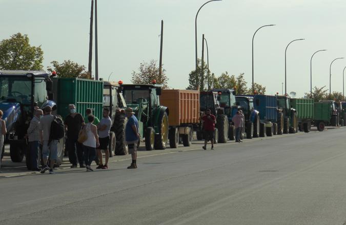 Una treintena de tractores se concentran en Valdepeñas por el precio de la uva