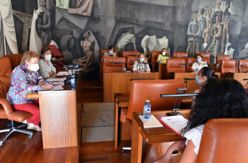 El Foro Provincial de Igualdad estudia una propuesta de declaración institucional en pos de la abolición de la prostitución