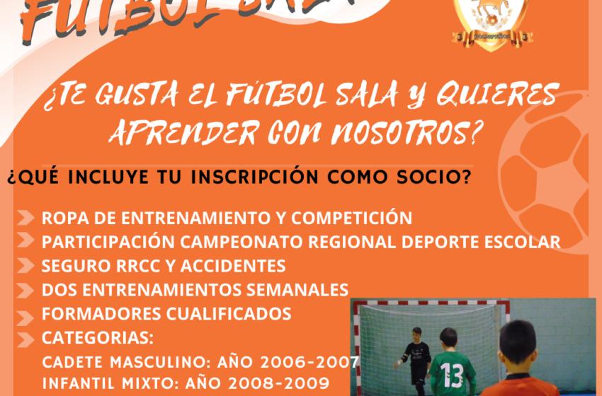 La sección de Fútbol Sala del C.D. Vivela Quijote sigue aceptando niños y niñas para sus equipos de deporte escolar